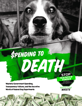 Spending to Death: Wasteful Government Spending, Transparency Failures, and the Secretive World of Federal Dog Experiments