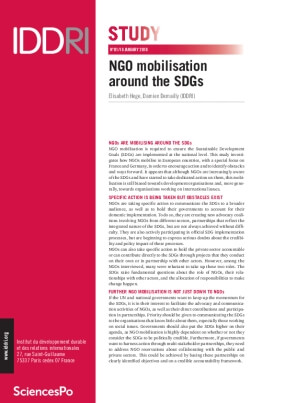 NGO Mobilisation Around the SDGs