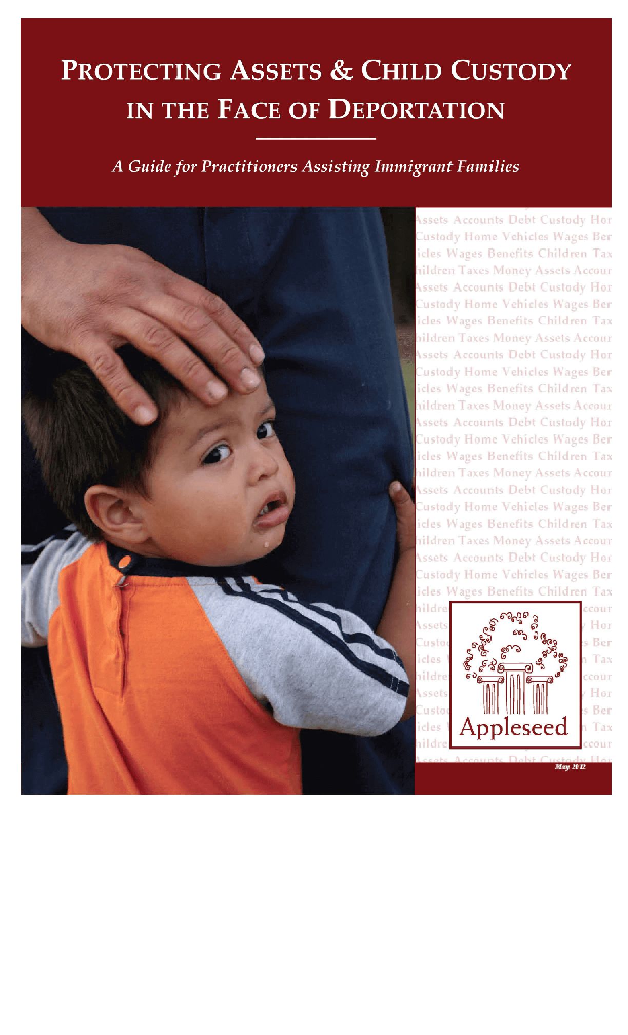 Protecting Assets & Child Custody in the Face of Deportation: A Guide for Practitioners Assisting Immigrant Families
