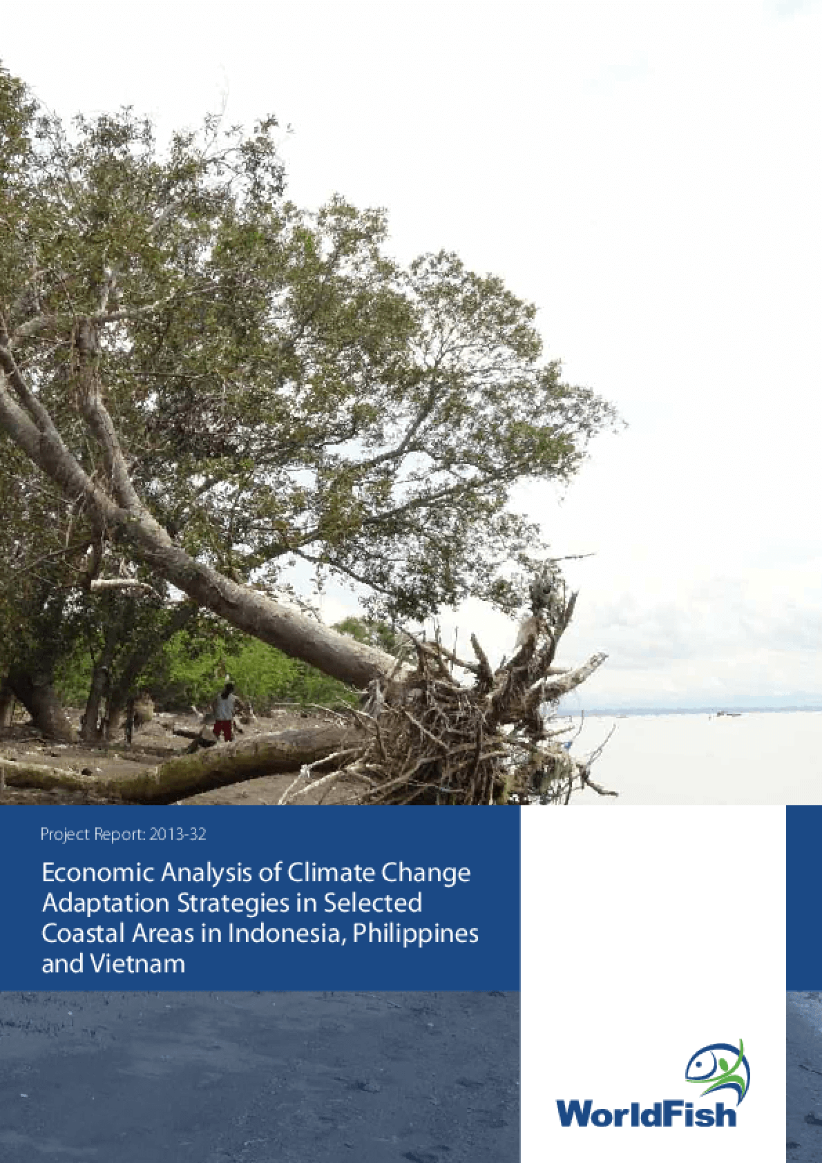 Economic Analysis of Climate Change Adaptation Strategies in Selected Coastal Areas in Indonesia, Philippines and Vietnam