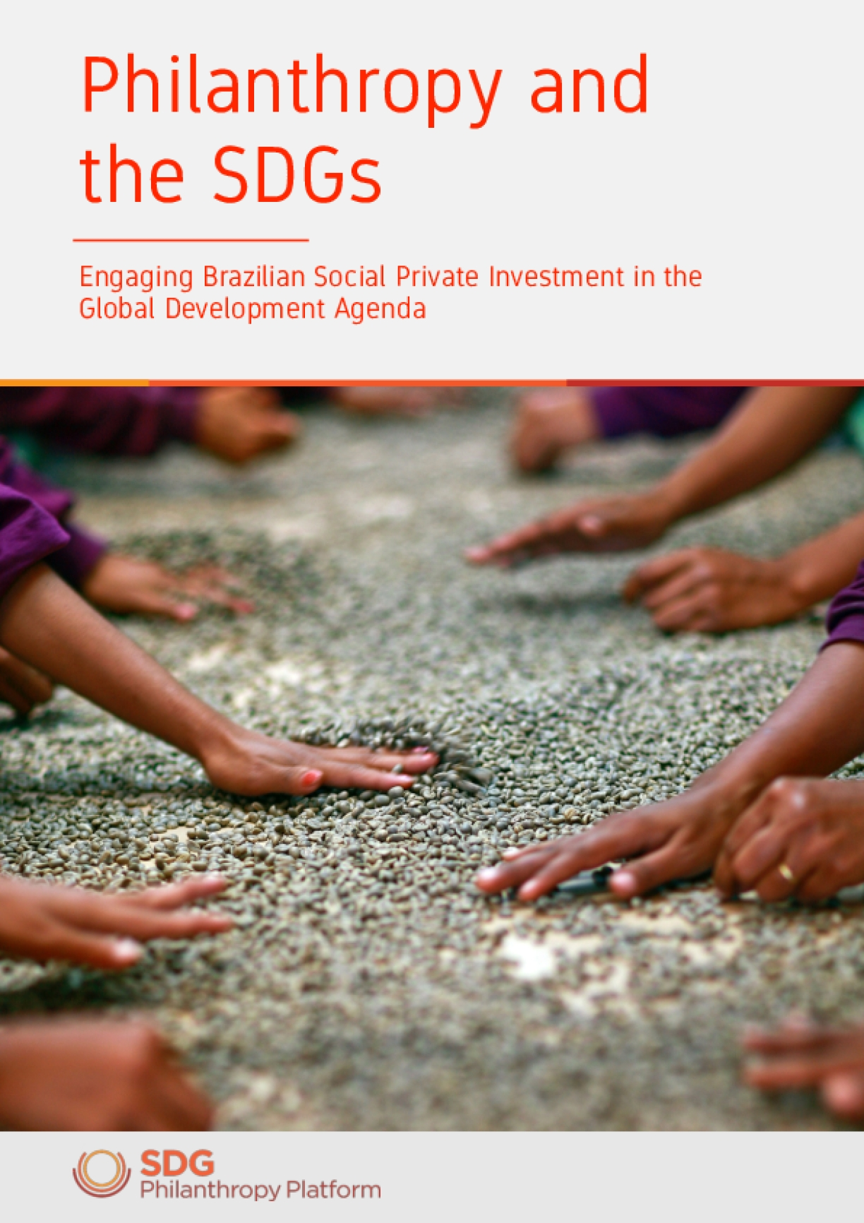 Philanthropy and the Sustainable Development Goals: Engaging Brazilian Private Social Investment in the Global Development Agenda