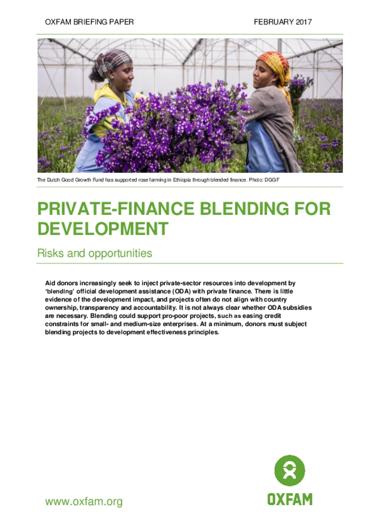 Private-finance Blending for Development: Risks and Opportunities
