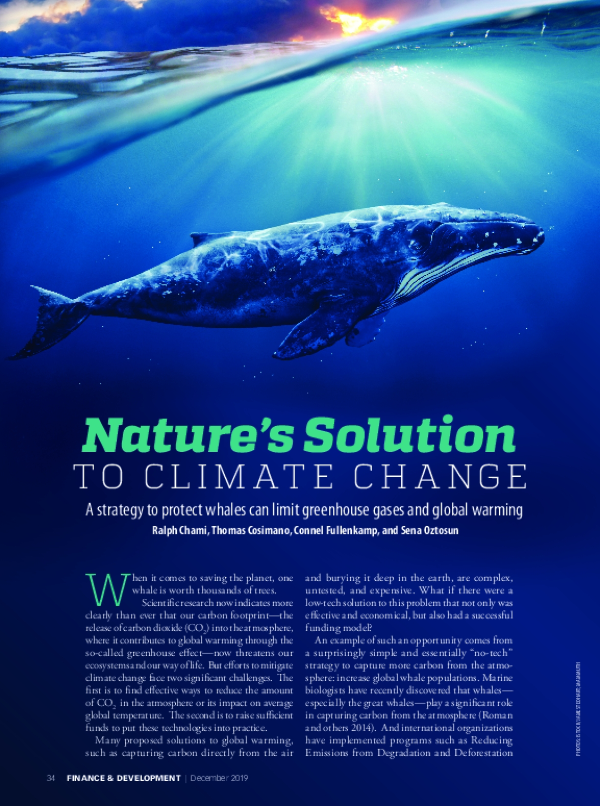 Nature's Solution to Climate Change