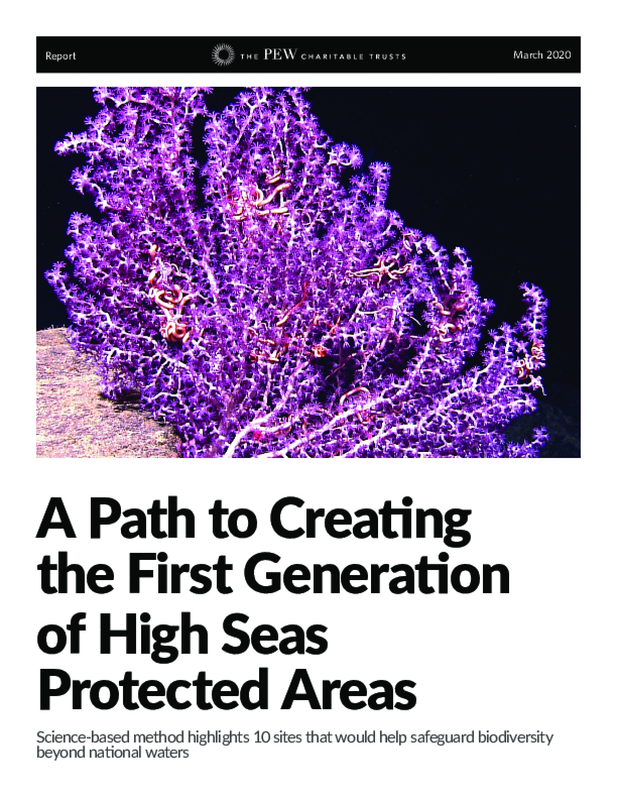 A Path to Creating the First Generation of High Seas Protected Areas
