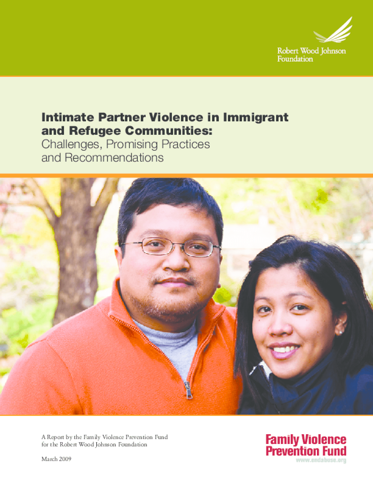 Intimate Partner Violence in Immigrant and Refugee Communities: Challenges, Promising Practices and Recommendations